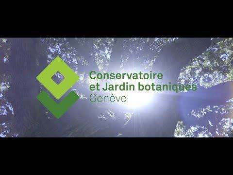 la ville clbre les 200 ans des conservatoire et jardin botaniques de genve - Jardin Botanique Geneve