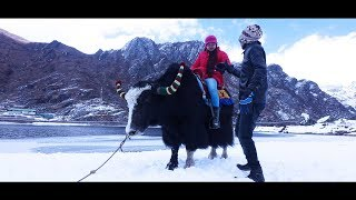 Sarwk Manliya    Official Music Video    JORA