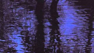 10 Biosphere - Green Reflections [Touch]