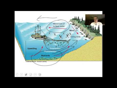 Terrestrial Biomes and Water Ecosystems