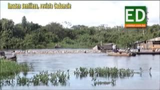 TRASLADAN RESES POR EN MEDIO DEL RÍO EN BENI