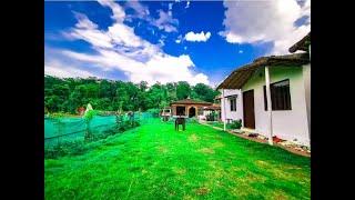 Budget Camping In Rajaji National Park | Camping In Rajaji National Park | Camping In Haridwar