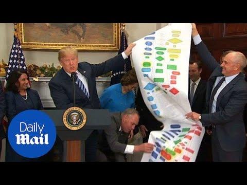 Trump considers ex-Microsoft exec for top economic adviser - Daily Mail