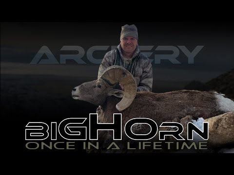 (Part 2 Of 2) Archery California Bighorn Utah Newfoundlands