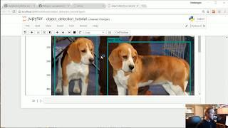 Intro - TensorFlow Object Detection API Tutorial p.1
