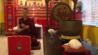 Medicine Buddha Mudras by Lama Karma Chotso