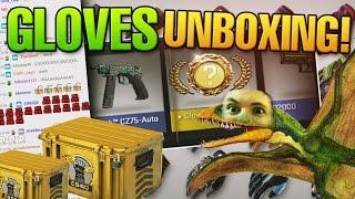 CS:GO Glove case opening - Gloves unboxing! biBa Live reaction :D