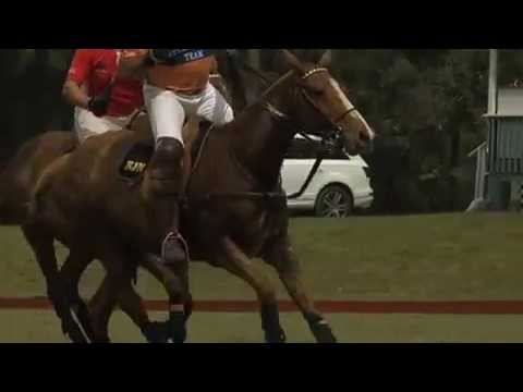 The Beverly Hills Polo Club