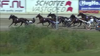Vidéo de la course PMU PRIX DE AVENCHES (NEWCOMER SERIE)