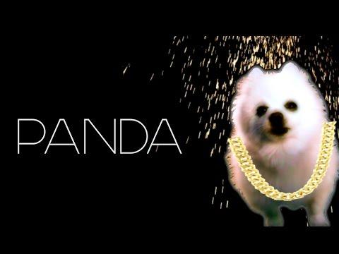 Gabe the dog - Panda - Desiigner Remix
