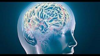 Los en cerebrales circulación mala síntomas