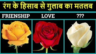 Different roses colour meaning in hindi | Rose ka matlab | Happy rose day | Rose day special video