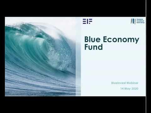 BlueInvest Webinar - Introducing the BlueInvest Fund