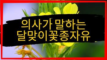 감마리놀렌산 부작용 (달맞이꽃종자유/보라지유, GLA) - 이런 6가지 경우를 반드시 조심하세요
