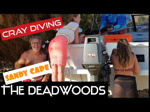 UNBELIEVABLE Beach Camping | Cray Diving | Sandy Cape | Western Australia | THE DEADWOODS
