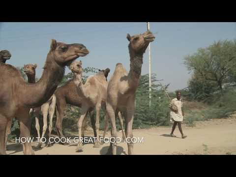 Camel Meat - Camel Recipe - How to cook Camel Stew