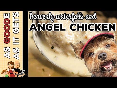 Instant Pot Angel Chicken // Sitting Bull Falls, New Mexico // RV Living