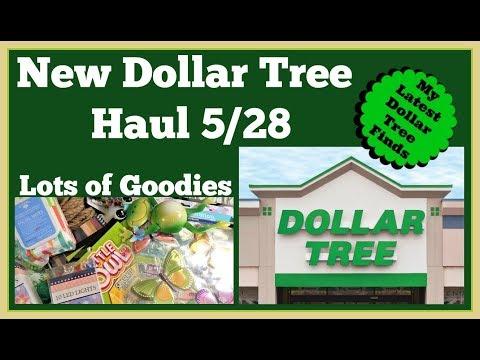 New Dollar Tree Haul 🤑 Lots Of Goodies