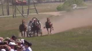 2) Русских троек. Краснотуранск 2015(Лошади-Horse–Animal-racing-конь-смотреть-онлайн-скачки)