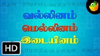 Ka Na Cha Naa   Kasada Thapara   Chellame Chellam    Tamil Rhymes For Kutties