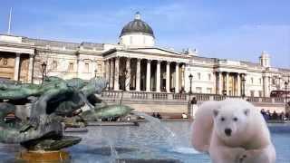 Белый медведь в Лондоне, прогулка белого медведя по улицам!