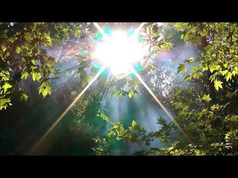 Самая Красивая Музыка, обволакивающая душу нежным теплом... Мелодия-Солнечное утро! Послушайте