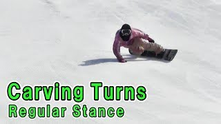 Snowboard Carving Turns FreeRide Freerun Beginner-Advanced