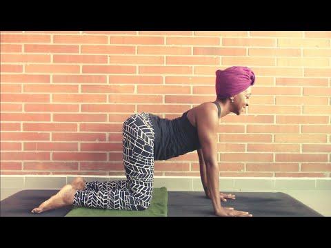 day 3  cat cow vinyasa flow  7day beginner yoga