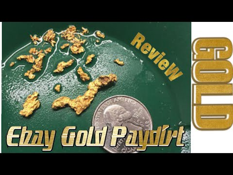 Ebay Seller Gold Paydirt Review, Whoa GOLD!