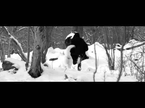 Versus - At Destiny's End (Promo Video) (Necessary Evil 2016 Album)