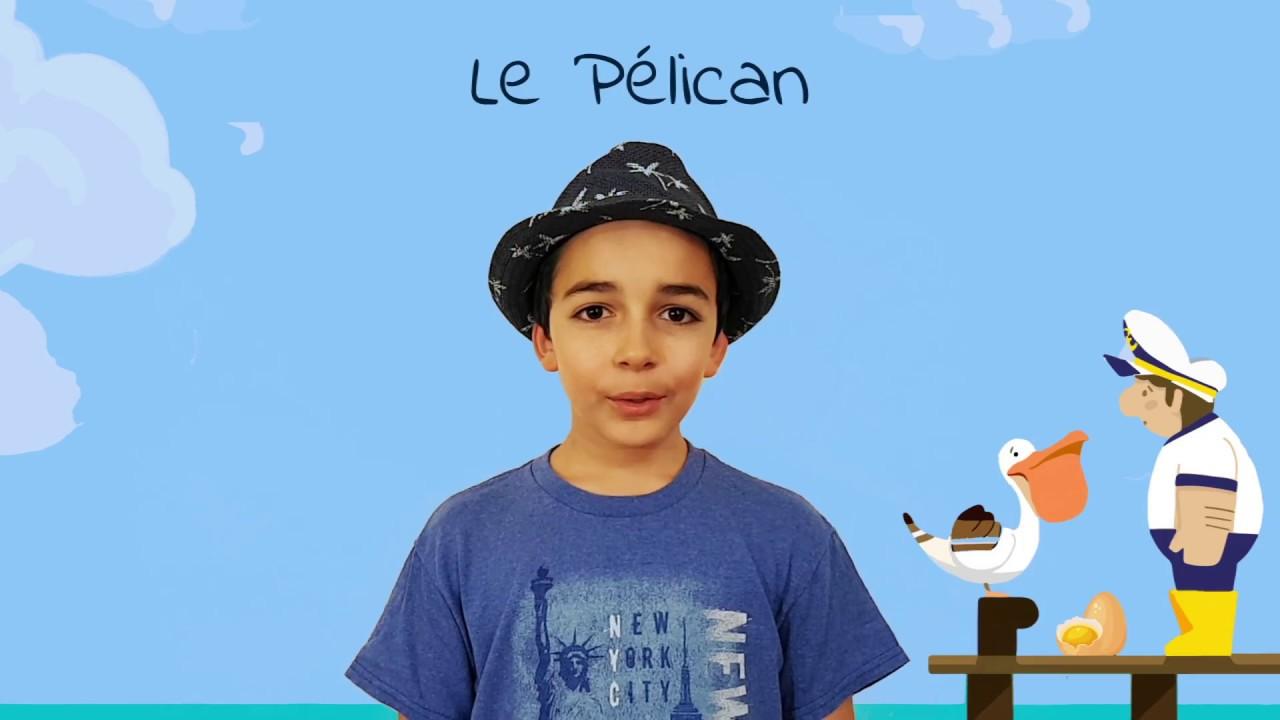 Poésie Le Pélican Robert Desnos Poèmes Pour Lécole Cm1 Cm2