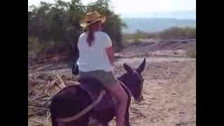 Adventure To Boquillas Mexico