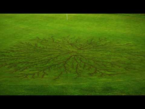 Lightning Strike Leaves Spectacular Mark on Golf Course in Wichita Falls, Texas
