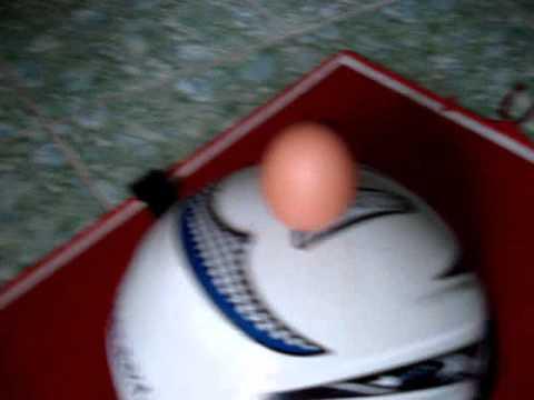 Thăng bằng quả trứng - PNhan.com