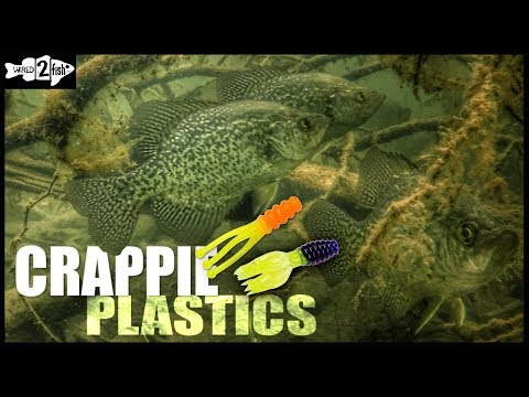Go-to Crappie Plastic Colors For Varying Water Clarity