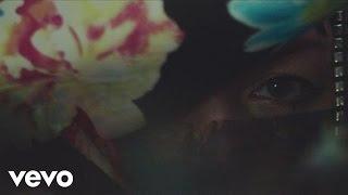 Miss Platnum - Glück & Benzin (Videoclip)