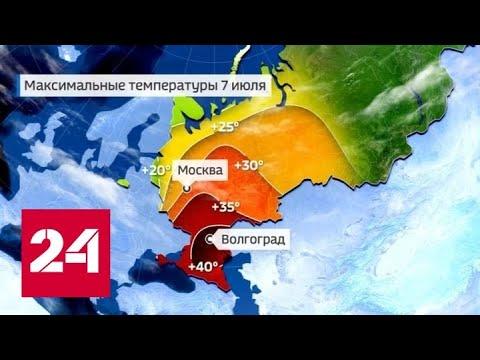Погода 24: почти 40-градусная жара в разы повысила риск возникновения пожаров - Россия 24