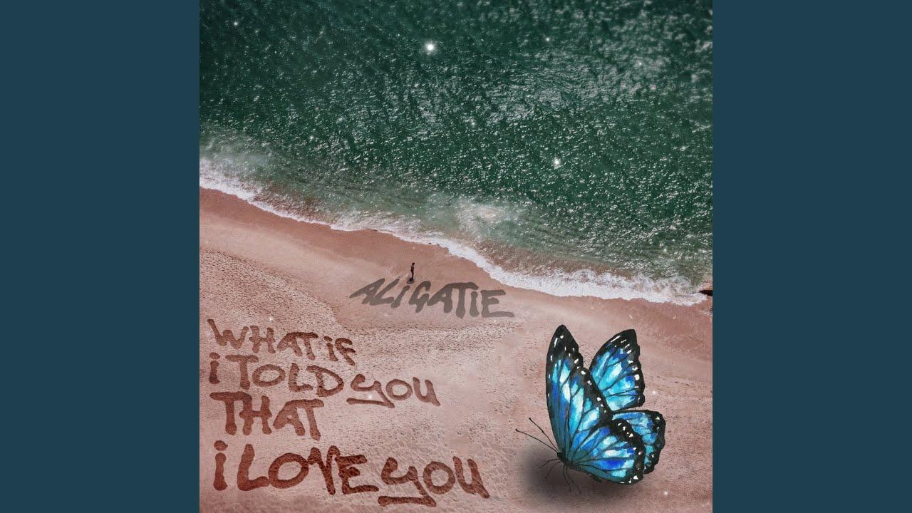 Arti Terjemahan Lirik Lagu Ali Gatie - What If I Told You That I Love You?