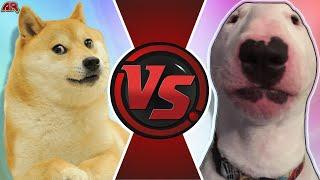 DOGE vs WALTER! (Walter vs Doge Meme Animation)   CARTOON FIGHT CLUB!