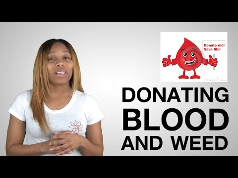 Video 8: Can you donate blood if you smoke weed?