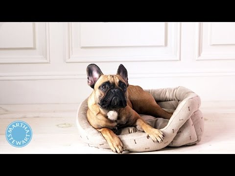 The Trick to Cleaning a Pet Bed - Martha Stewart
