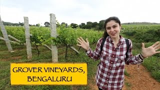 Grover Vineyards || Bengaluru