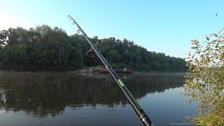 Фидер. Живцовка. Рыбалка на Фидер в Июне. Река Десна