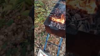 Как не надо жарить шашлык