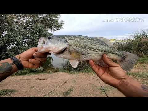 Fishing El Paso Texas Ascarate Lake 2019💥💥 PB💥💥of The Year