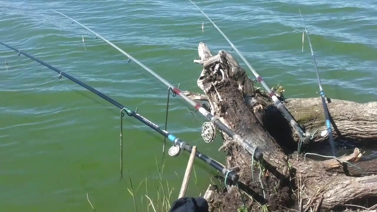 Рыбалка в сорочий лог