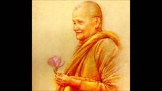 Chỉ Là Một Cội Cây - Thiền Sư Ajahn Chah