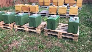 عالم النحل ,نقل خلية النحل الى مكان قريب من المنحل