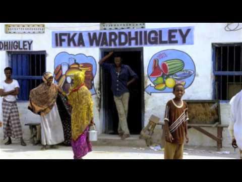 British Somalis 'journey home'