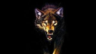 لحن راب هادف 2020 | الذئب القاتل | لحن راب من دون حقوق